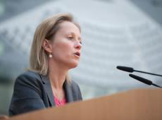 Vlaamse Regering werkt verder aan oplossing Saeftinghedok