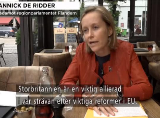 Annick De Ridder Zweeds interview